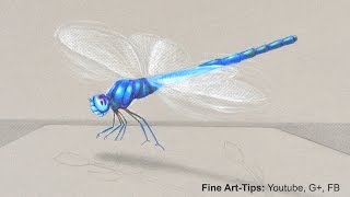 How to Draw a Dragon Fly in 3D - My tips to draw better