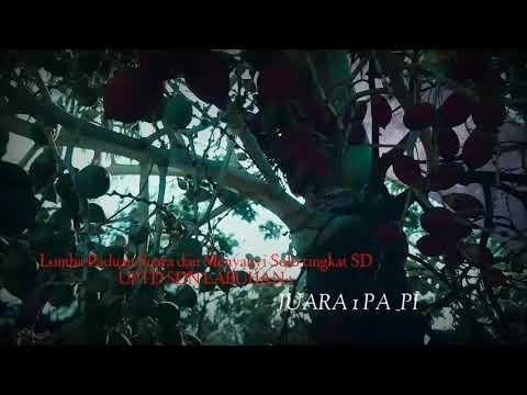 Rayuan Pulau Kelapa Unofficial Klip