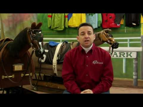 How to Become a Jockey or Rider
