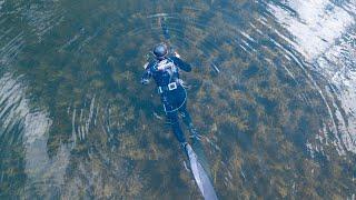 Где сазан там и охотник ДАРЫ ЕНИСЕЯ Подводная охота на Красноярском водохранилище
