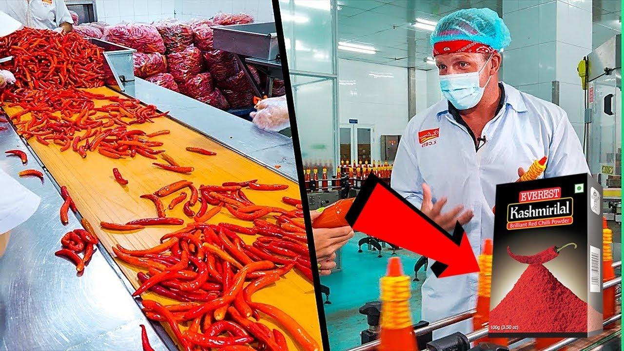 फैक्ट्री में की जाने वाली इन चीजों को देखकर आप भी हो जाओगे हैरान | Chilli Powder Factory Production