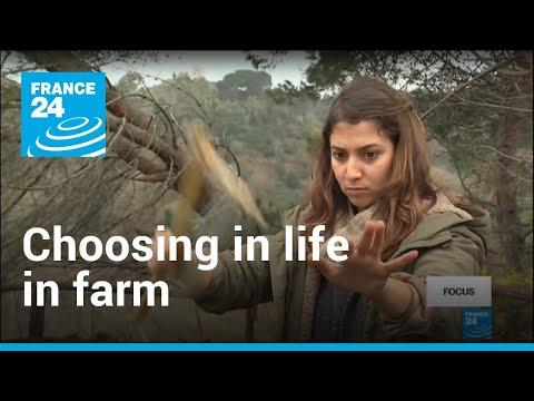 Why Italian graduates are choosing life on the farm thumbnail