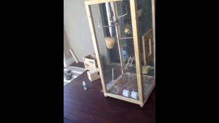 Awesome Homemade Bird Cage