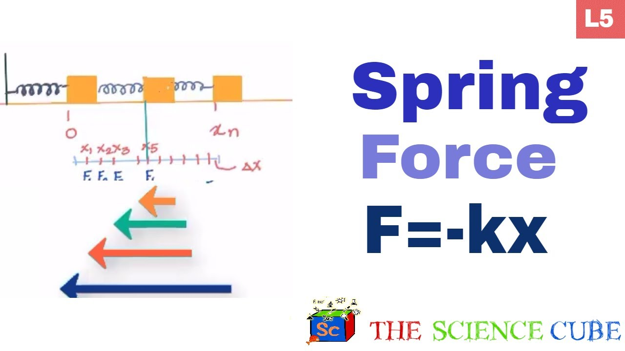 Spring Force  What Is The Work Done By The Force F