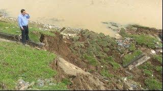 Tin tức 24h Mới Nhất : Nghệ An: Sạt lở nghiêm trọng đoạn đê kênh đào dẫn nước từ sông Lam
