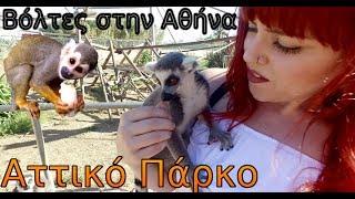 Βολτα Στο Αττικό Ζωολογικό Πάρκο - Ολα τα Ζωακια - Athens Zoo Park