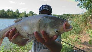 Рыбалка снасти на толстолоба и ловля раков на поплавок My fishing