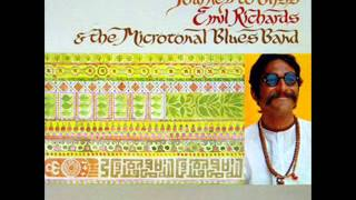 Emil Richards & The Microtonal Blues Band Us   Journey to Bliss
