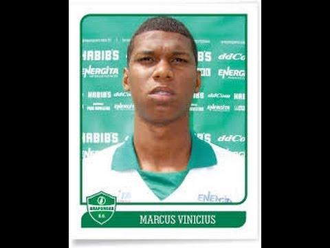 Marcos Vinicius   Volante