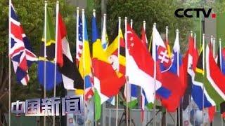 [中国新闻] 第二届进博会今日开幕 中国市场这么大 欢迎大家都来看看 | CCTV中文国际