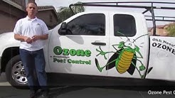 Scorpion Pest Control Goodyear AZ 480-493-5028 Ozone Pest Control