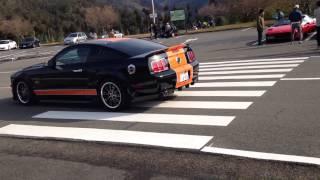 Mustang Shelby GT 500 - 4.6L SOHC V8気筒 (24V)