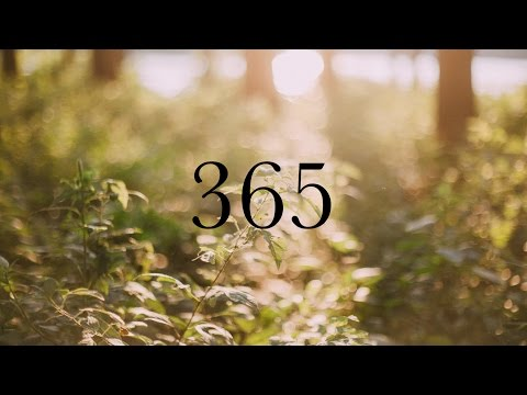 365 - A Year in 365 Seconds