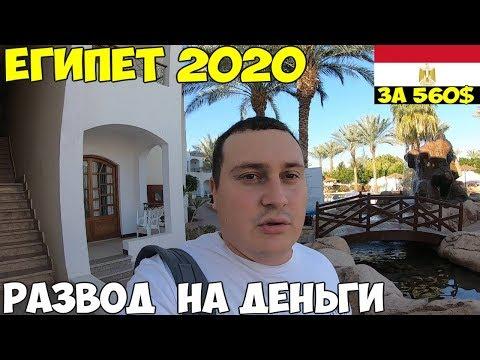 Египет 2020 Шарм Эль Шейх перелет, виза, как разводят туристов. Заселение Coral Hills 4* из России