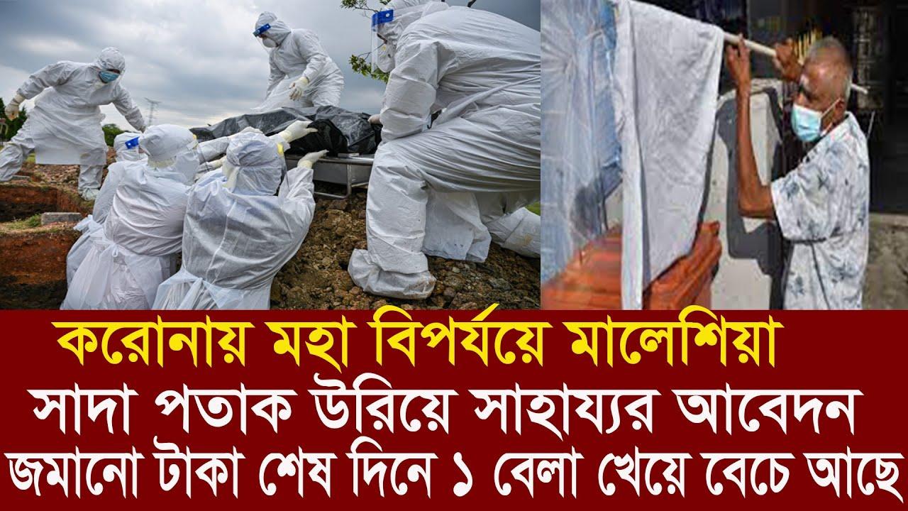 Bangla News 31 July 2021 Bangladesh latest news Today BDNS news Bangla TV politcal news bd