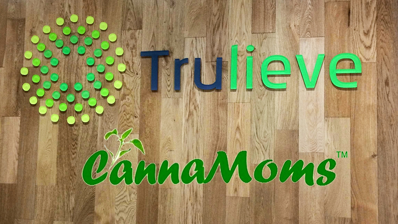 how to get a marijuana dispensary license in florida