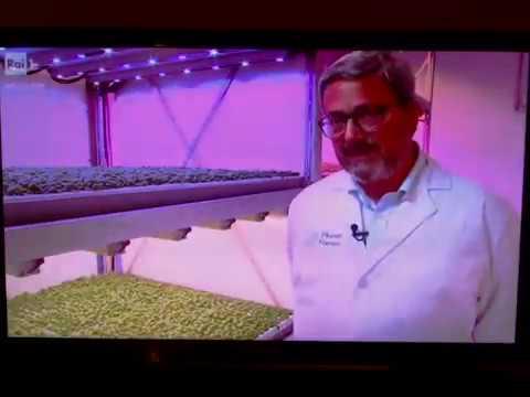 Planet Farms Milano - servizio di SuperQuark 07/08/19