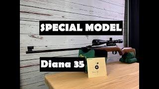 Luftgewehr diana jetzt günstig online kaufen