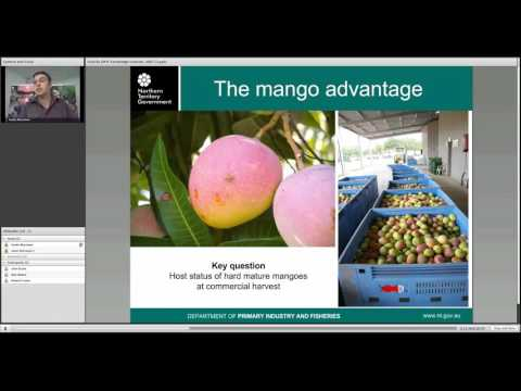 Fruit Flies, Mangoes and Market Access (July 2013)