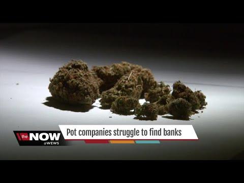 Local medical marijuana companies struggling to find banks