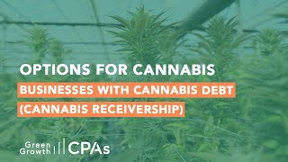 Options for Cannabis Businesses with Cannabis Debt (Cannabis Receivership)