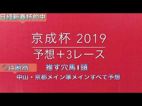 【競馬予想】 京成杯 2019 予想 淀短距離S ジャニュアリーS 紅梅S