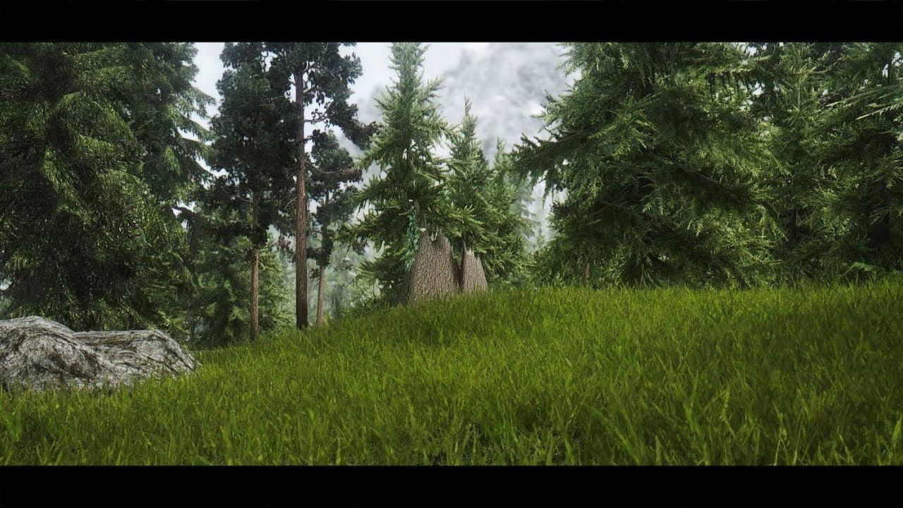skyrim best grass mod