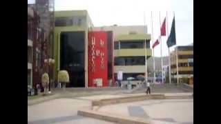 MUNICIPALIDAD DE LOS OLIVOS (Lima-Perú)