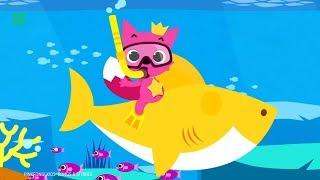 The History Of 'Baby Shark'