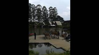 Tapak Kaki Wisata - Musik Angklung @Dusun Bambu