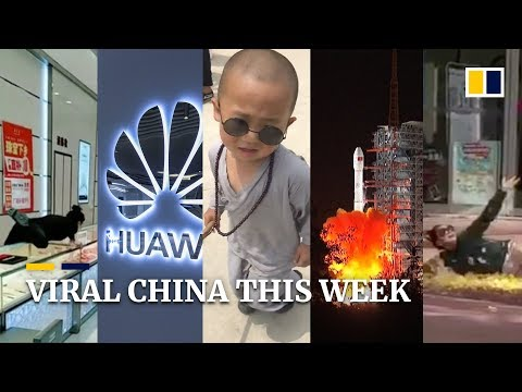Viral China this week: Three-year-old kung fu expert, why the US care Huawei so much and more