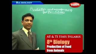 AP & TS State Board Syllabus | 8th Biology | Production of Food from Animals | Live Video