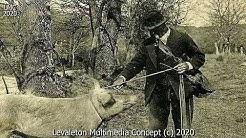 Histoire des Alpes de Haute Provence