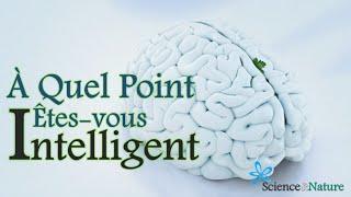 ✔ Test d'Intelligence -- À Quel Point Êtes vous Intelligent ?