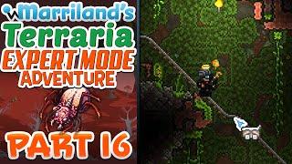 Terraria 1.3.3 (PC) Expert Mode, Part 16: So, About That Jungle Exploration...!