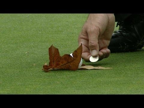 Lee Westwood gets leaf ruling at World Challenge