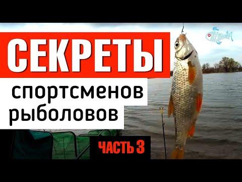 Секреты спортсменов рыболовов. Часть 3 / Fish Dream 2019.