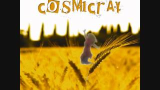 COSMICRAY - Fly My Love | Official Audio Release (New Single 2014)