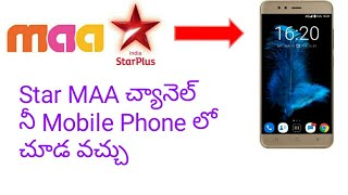 Star Maa Live Channel Video in MP4,HD MP4,FULL HD Mp4 Format