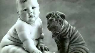 funny baby images.avi