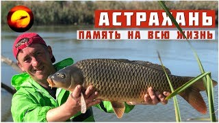 Рыбалка и отдых в Астрахани от А до Я / Память на всю жизнь