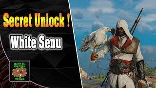 Assassins Creed Origins - How to unlock the Hidden Senu Skin
