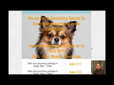 Effective Facebook Marketing For Pet Groomers And Local Businesses