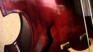 5 string upright bass ross doublebass