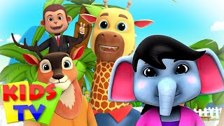 Zoo Song | We Are Going To The Zoo | Animal Sound Song | Junior Squad | Kids Tv