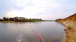ЩУЧИЙ ДЕНЬ! Ловля щуки на спиннинг на реке! Рыбалка в сентябре!