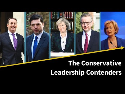 The Conservative Leadership Contenders