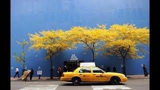 Autumn in New York/Осень в Нью-Йорке - Полная версия (Что посмотреть в Нью-Йорке) / Видео