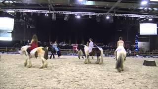 Wallonie Equestre Event 2015 avec AEC FIRFOL