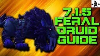 FERAL DRUID (7.1.5) PvP GUIDE | WoW Legion